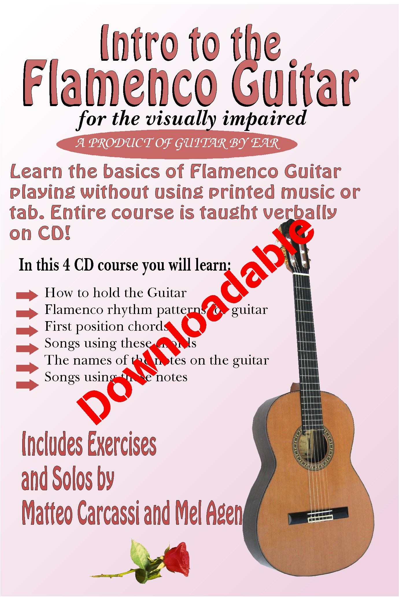 Intro to the Flamenco Guitar for the Visually Impaired (Downloadable)