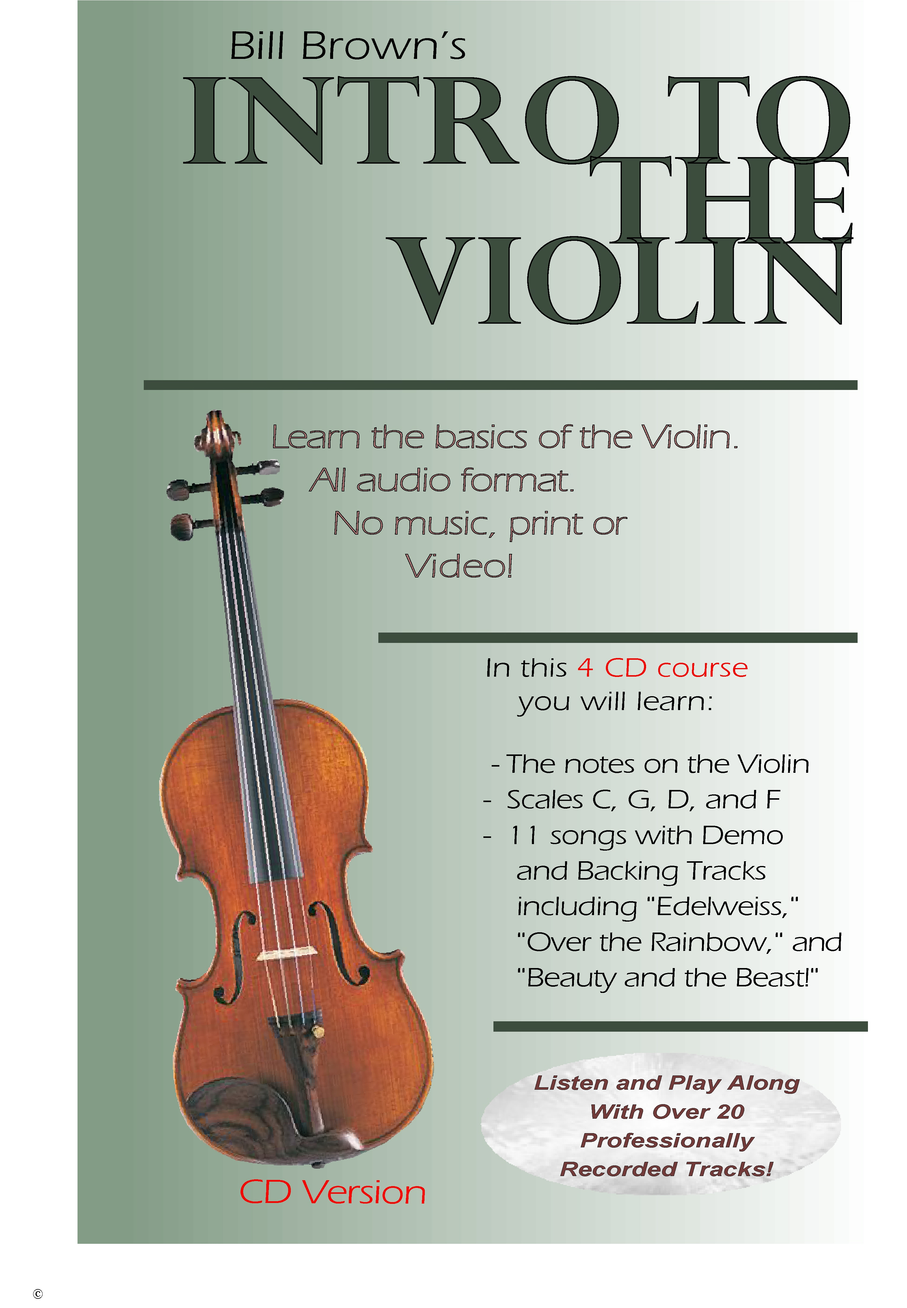 Intro to the Violin