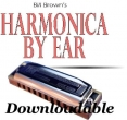 Intro to the Harmonica for the Visually Impaired (Downloadable)